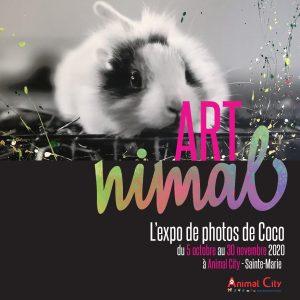 ARTNIMAL-